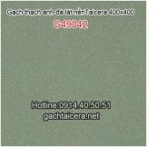 Gạch thạch anh Taicera lát nền 40x40 G49042