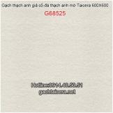 Gạch Taicera sale 60x60 G68525