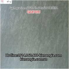 Gạch granite Taicera sần 60x60 G68769J