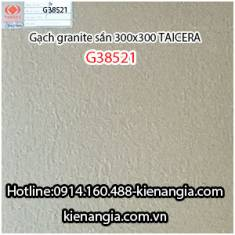Gạch granite Taicera sần 30x30 G38521