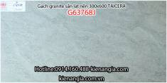 Gạch granite Taicera sần 30x60 G63768J