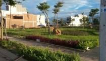 Khu đô thị sinh thái H...