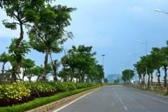 Cần bán đất đường Nguyễn Phước Lan, Gần Cầu Hòa Xuân