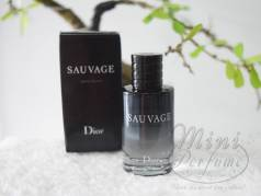 Sauvage Christian Di...