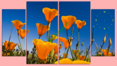 Tranh đồng hồ treo tường hình hoa - AmiA TDH153