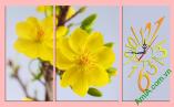 Tranh đồng hồ hoa Mai Vàng ghép bộ 3 tấm