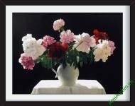 Tranh hoa mẫu đơn đẹp Amia 867