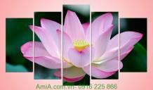 Tranh hoa sen hồng đẹp Amia 920