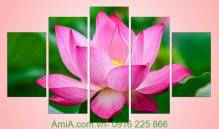 Tranh in hoa sen ghép bộ 5 tấm Amia 936