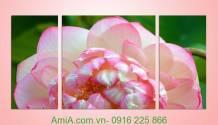 Tranh vẻ đẹp hoa sen 3gheps bộ 3 tấm Amia 938