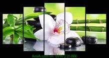 Tranh nôi thất Spa hoa lan Amia 951