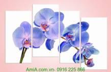 Tranh lan hồ điệp màu xanh tím Amia 957