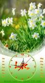 Mẫu đồng hồ tranh treo lịch Tết hoa thủy tiên TL19