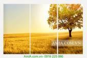 Tranh thiên nhiên đẹp cánh đồng vàng bộ 3 tấm AmiA 2012