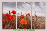 Tranh thiên nhiên đẹp hoa poppy AmiA 1056