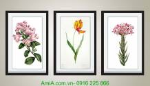 Bộ khung tranh hoa lá nghệ thuật 3 tấm AmiA 182
