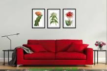 Bộ tranh khung nghệ thuật hoa lá 3 tấm AmiA 1083