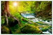 Tranh phong cảnh thiên nhiên thác nước đẹp AmiA 174791479