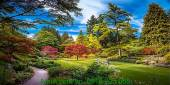 Tranh phong cảnh mùa thu trong công viên cây xanh AmiA 1120
