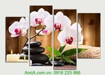 Tranh ghép bộ hoa phong lan trang trí phòng khách, spa đẹp
