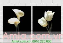 Tranh ghép bộ hoa rum, hoa tulip 2 tấm in canvas, in ép gỗ