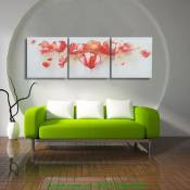 Tranh hoa poppy in vải canvas ghép bộ 3 tấm AmiA 4144