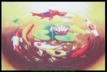 Tranh vải canvas cá chép hoa sen AmiA 4209