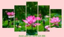 Tranh hoa sen ghép bộ 5 tấm AmiA 1259