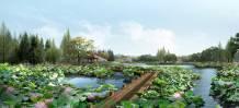 Tranh phong cảnh đẹp thiên nhiên hồ sen AmiA 1263