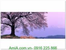 Tranh cây hoa anh đào phú sỹ nhật bản AmiA 1288