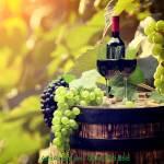 Tranh chai rượu vang treo tường phòng ăn sang trọng AmiA 1373