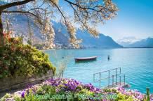 Tranh phong cảnh đẹp thiên nhiên ở nước ngoài AmiA 1372