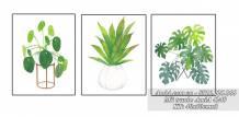 Tranh bộ 3 bình hoa xanh tươi phong cách Bắc Âu AmiA 4249