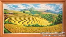 Tranh vẽ ruộng bậc thang Mù Cang Chải mùa lúa chín vàng TSD 428