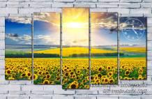 Tranh mặt trời mọc trên cánh đồng hoa hướng dương AmiA 1540