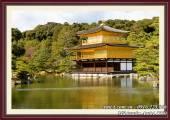 Tranh phong cảnh chùa Vàng Nhật Bản Kinkakuji AmiA 1550