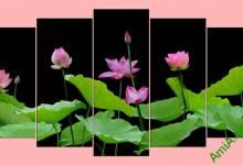 10 mẫu tranh hoa sen đẹp nhất AmiA P1