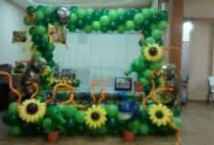 BALLOON FRAME 013