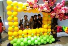 BALLOON FRAME 016