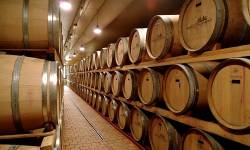 Vì sao rượu vang thường đi với gỗ sồi