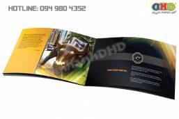 In brochure chuyên nghiệp nhanh, giá rẻ tại Hà Nội