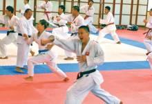 Đào tạo võ thuật suzucho karate nghệ an