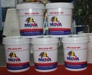 Mova-Color-30PC-Vua-hoan-thien-thay-the-son-da-sac-mau