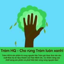 Tinh Dầu Tràm HQ 50ml