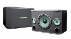 P-507-Loa-karaoke-PARAMAX-P-507