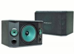 P-509-Loa-karaoke-PARAMAX-P-509