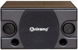 Loa-karaoke-Arirang-TSE-T5