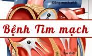 Triệu chứng của các loại bệnh tim