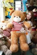 Gấu Teddy Len