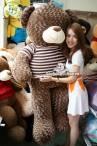 Gau-Teddy-Socola